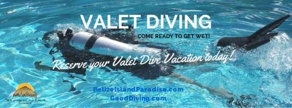 Valet Diving :: A Unique Belize Diving Experience