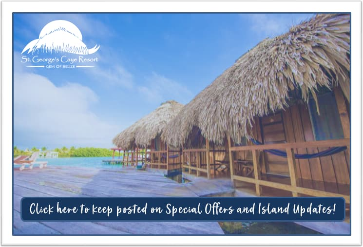 Click Here to Keep Posted on Special Offers and Island Updates!