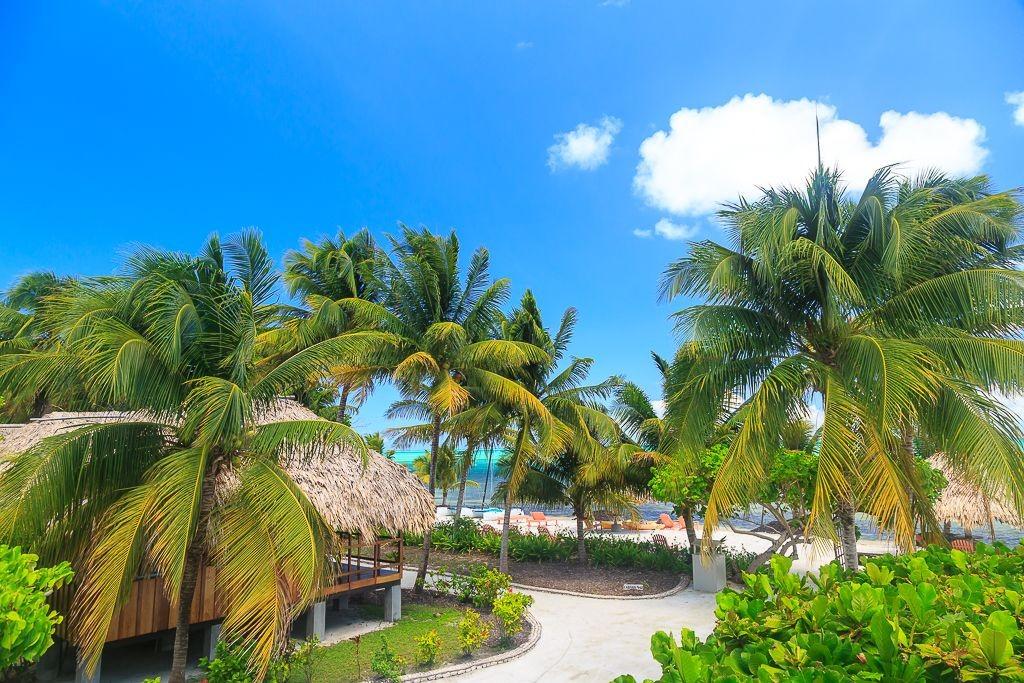 oceantfront-bungalow-belize-ocean